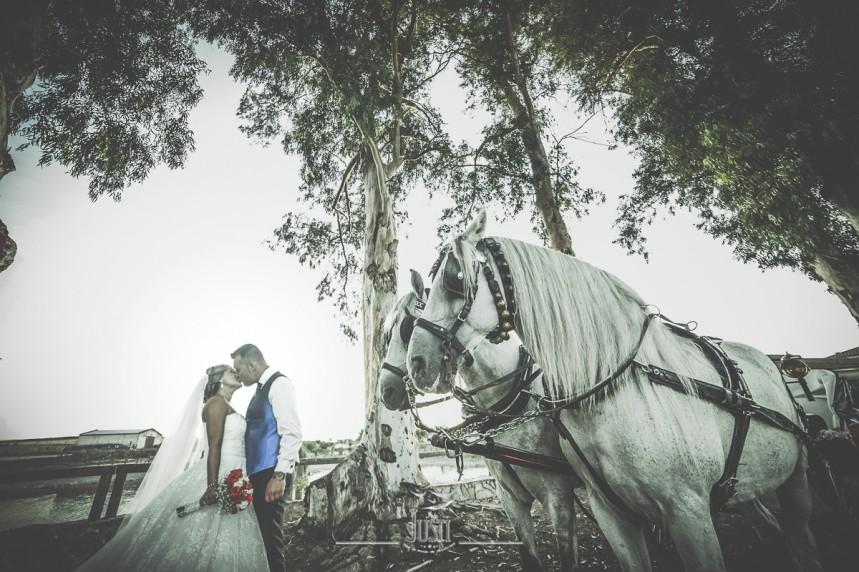 reportaje boda en miajadas escurial caceres fotografos profesionales Foto Video Justi (54 de 93)