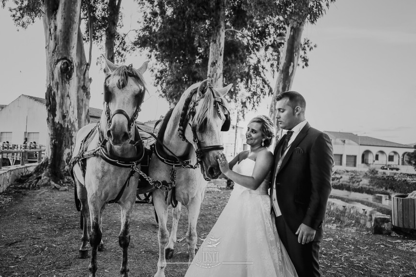 reportaje boda en miajadas escurial caceres fotografos profesionales Foto Video Justi (55 de 93)