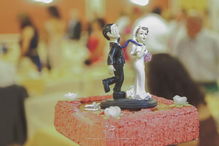 reportaje boda en miajadas escurial caceres fotografos profesionales Foto Video Justi (60 de 93)